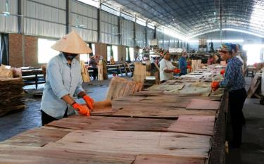 Workers in Van Yen district operate a plywood production line