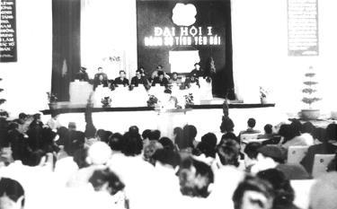 Đại hội Đảng bộ tỉnh Yên Bái nhiệm kỳ 1992 - 1996 hoạch định chủ trương, đường lối, chiến lược phát triển kinh tế - xã hội sau khi tái lập tỉnh.