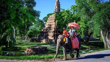 Du khách cưỡi voi tại Ayutthaya, Thái Lan