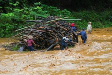 Một số người dân vớt củi ở thượng nguồn sông suối trôi khu vực về hạ lưu (Ảnh Minh họa).
