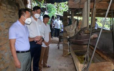 Đoàn giám sát của Thường trực HĐND tỉnh giám sát thực địa thực hiện Nghị quyết 69 tại xã La Pán Tẩn, huyện Mù Cang Chải.