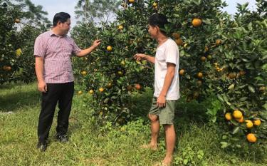 Bí thư Đảng ủy xã Mai Sơn Hoàng Trung Chinh (bên trái) trao đổi với người dân về phát triển cây ăn quả.