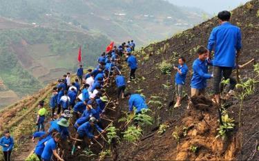 Công trình khai hoang ruộng bậc thang tại huyện Trạm Tấu do Ban Thường vụ Tỉnh đoàn phối hợp với huyện Mù Cang Chải và Trạm Tấu chỉ đạo thực hiện, thu hút đông đảo ĐVTN tham gia.