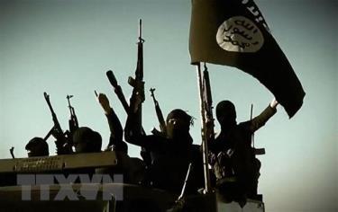 Các tay súng thánh chiến tại một địa điểm ở tỉnh Anbar, Iraq.