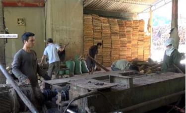 Cơ sở chế biến gỗ bóc của anh Vũ Văn Đô tạo việc làm thường xuyên cho 10 lao động với thu nhập từ 6 - 7 triệu đồng/tháng.