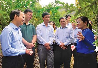 Đồng chí Đỗ Đức Duy - Phó Bí thư Tỉnh ủy, Chủ tịch UBND tỉnh (ngoài cùng, bên trái) và đoàn công tác của tỉnh tham quan, trao đổi kinh nghiệm sản xuất nông nghiệp tại tỉnh Sơn La.