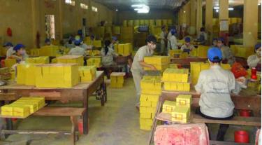 Cán bộ, người lao động của Công ty cổ phần Nông lâm sản thực phẩm Yên Bái được đóng bảo hiểm xã hội đầy đủ. (Trong ảnh: Công nhân Nhà máy Gia công giấy xuất khẩu Nguyễn Phúc trong dây chuyền sản xuất).