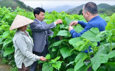 Lãnh đạo xã Đông Cuông, huyện Văn Yên kiểm tra việc thực hiện Chương trình hành động 190 của Tỉnh ủy tại thôn Thác Cái.