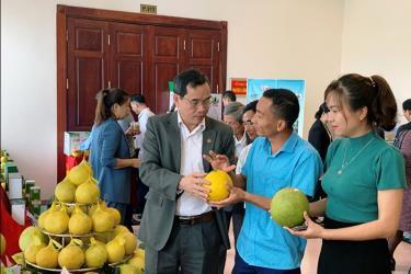 Các đại biểu tham quan gian hàng trưng bày sản phẩm bưởi và trao đổi kinh nghiệm sản xuất tại diễn đàn.