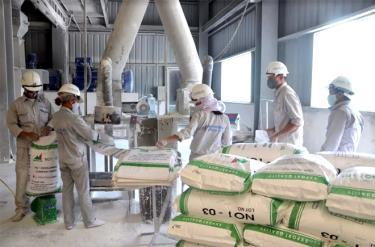 Sản xuất bột đá tại Công ty phát triển số 1 TNHH một thành viên Hải - Dương. (Ảnh: Đức Toàn)