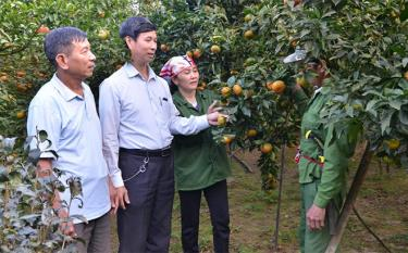 Lãnh đạo xã Thượng Bằng La động viên người dân tích cực đầu tư phát triển vùng cây ăn quả có múi.