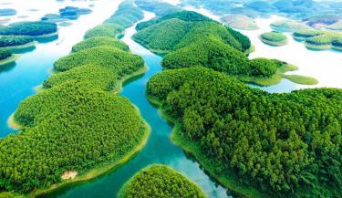 Hồ Thác Bà.