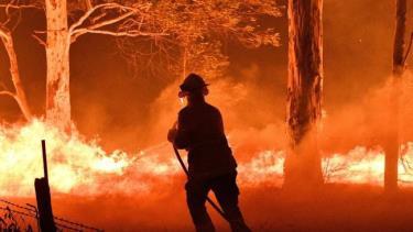 Lính cứu hỏa Australia nỗ lực dập tắt cháy rừng.