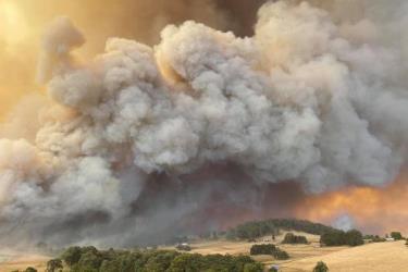 Khói từ một đám cháy rừng Australia.