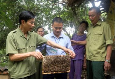 Các thành viên Hợp tác xã Nông nghiệp Minh Bảo trao đổi kỹ thuật nuôi ong mật.