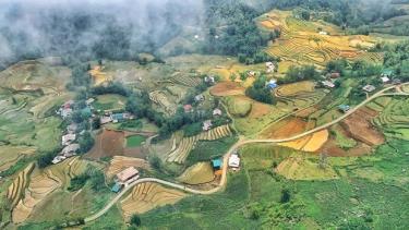 Thung lũng Mường Hoa, Sapa mùa đổ nước.