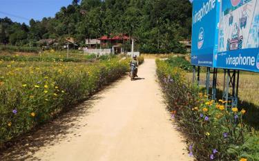 Đường hoa thôn Khe Lếch, xã Hưng Khánh.