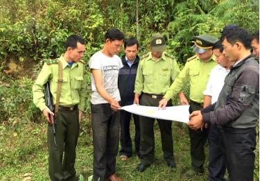 Lực lượng kiểm lâm tỉnh thường xuyên kiểm tra rừng.