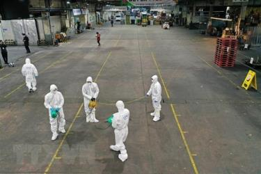 Spraying disinfectants at a vegetable market in Daegu, the Republic of Korea, to prevent the spread of the novel coronavirus disease (COVID-19) on February 20.