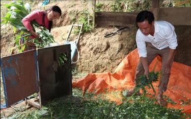 Anh Sùng A Tu sử dụng máy băm cỏ thay sức người.