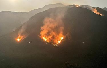Tại điểm cháy rừng toàn cây bụi, thảm thực vật trên núi cao nên khó khăn cho các lực lượng dập lửa.