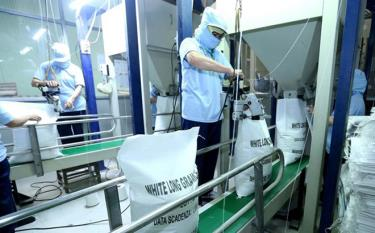 Rice is packaged for export at the factory of the Song Hau Food Company in Can Tho city.