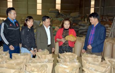 Lãnh đạo thị trấn Mậu A và các ngành thăm cơ sở sản xuất các sản phẩm quế tại thị trấn.