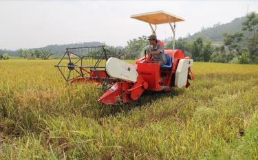Nông dân Yên Bái đưa cơ giới vào sản xuất. (Ảnh: T.L)