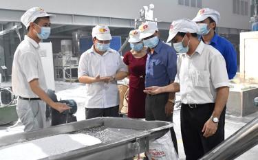Lãnh đạo Cục Thuế tỉnh nắm tình hình sản xuất của Công ty cổ phần An Tiến Industries.