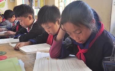 Giáo dục dân tộc được quan tâm, toàn tỉnh hiện có 9 trường phổ thông dân tộc nội trú, 50 trường phổ thông dân tộc bán trú, 55 trường có học sinh bán trú.