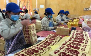 Gia công giấy xuất khẩu tại Công ty cổ phần Lâm nông sản thực phẩm Yên Bái.