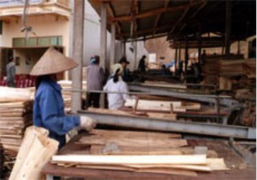 Các cơ sở sản xuất chế biến gỗ rừng trồng đang phát huy hiệu quả, đóng góp lớn trong giá trị sản xuất công nghiệp hàng năm của huyện Yên Bình.