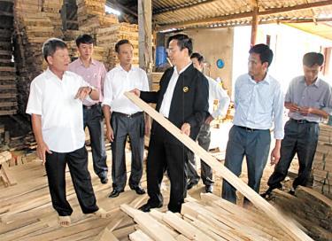 Sản xuất rừng gỗ lớn đáp ứng nhu cầu chế biến là giải pháp cấp bách hiện nay.