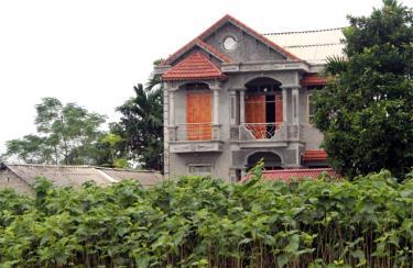 Việt Thành phấn đấu trồng mới 50 ha dâu, nâng tổng diện tích trồng dâu toàn xã lên 180 ha. (Ảnh: Minh Huyền)