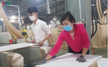 Doanh nghiệp chế biến gỗ Việt Nam đang gặp khó vì dịch Covid-19. (Ảnh minh họa)