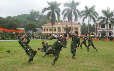 Các chiến sĩ lực lượng vũ trang tỉnh biểu diễn võ thuật tại lễ ra quân huấn luyện.