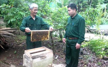Cựu chiến binh Nguyễn Chí Long, thôn Cẩu Vè, xã Tân Lĩnh (bên trái), phát triển nuôi ong, thu nhập trên 70 triệu đồng/năm.