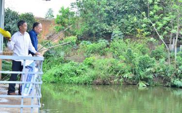 Nhờ nuôi cá, mỗi năm ông Lan thu lãi hơn 100 triệu đồng.