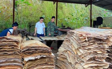 Xưởng chế biến gỗ rừng trồng của đảng viên Hoàng Mạnh Hùng ở Chi bộ thôn Bản Phạ, xã Việt Hồng tạo việc làm thu nhập ổn định cho nhiều lao động địa phương.