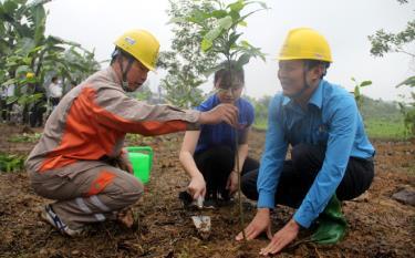 """Lãnh đạo cùng cán bộ, công nhân viên,  người lao động Công ty Điện lực Yên Bái trồng cây hưởng ứng phong """"Tết trồng cây"""" năm 2021."""