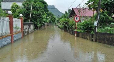 Một tuyến đường trên địa bàn xã Tân Lĩnh huyện Lục Yên bị úng ngập.