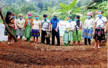 Nhân dân huyện Trạm Tấu được tập huấn kỹ thuật với cây trồng mới.