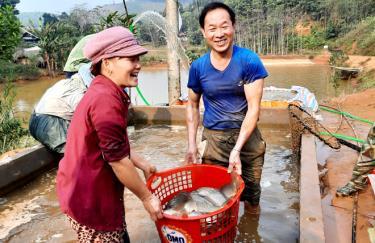 Cựu chiến binh Đàm Văn Lạnh cùng gia đình thu hoạch cá thương phẩm.