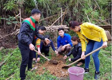 Tuổi trẻ xã Khánh Hòa trồng cây bóng mát trên tuyến đường trung tâm xã.