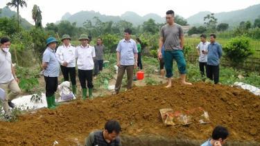 Đồng chí Hoàng Xuân Đán - Phó chủ tịch UBND huyện chỉ đạo công tác tiêu hủy lợn bị dịch tả lượn Châu Phi tại xã Khai Trung.