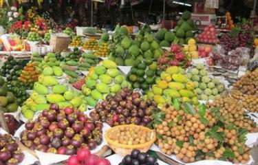 Rau quả Việt Nam ngày càng được ưa chuộng.
