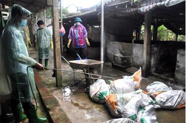 Phun thuốc khử trùng tiêu độc là giải pháp hữu hiệu nhất trong công tác phòng chống dịch bệnh bảo vệ đàn vật nuôi.