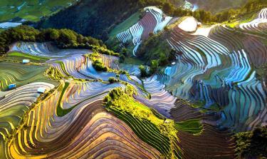 Ruộng bậc thang Mù Cang Chải mùa nước đổ.