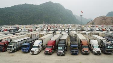 Nhu cầu xuất khẩu hàng hóa, nông sản Việt Nam sang Trung Quốc là rất lớn. Trong ảnh, kho bãi tập kết xe chở hàng hóa xuất nhập khẩu tại cửa khẩu Hữu Nghị - Lạng Sơn. Ảnh: Bộ NN-PTNT cung cấp