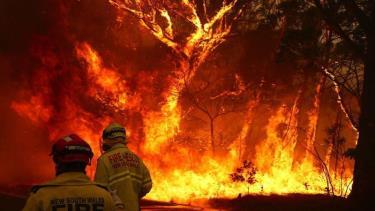 Australia bắt đầu điều tra diện rộng về các vụ hỏa hoạn.
